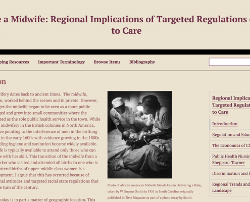 Make Me a Midwife: Regional Implications of Targeted Regulations on Access to Care